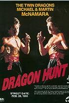 Image of Dragon Hunt