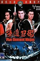 Image of Five Element Ninjas