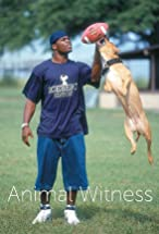 Primary image for The Michael Vick Case