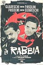 Image of La rabbia