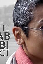 The Zainab Salbi Project
