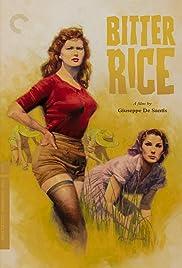 Bitter Rice Poster