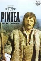 Image of Pintea