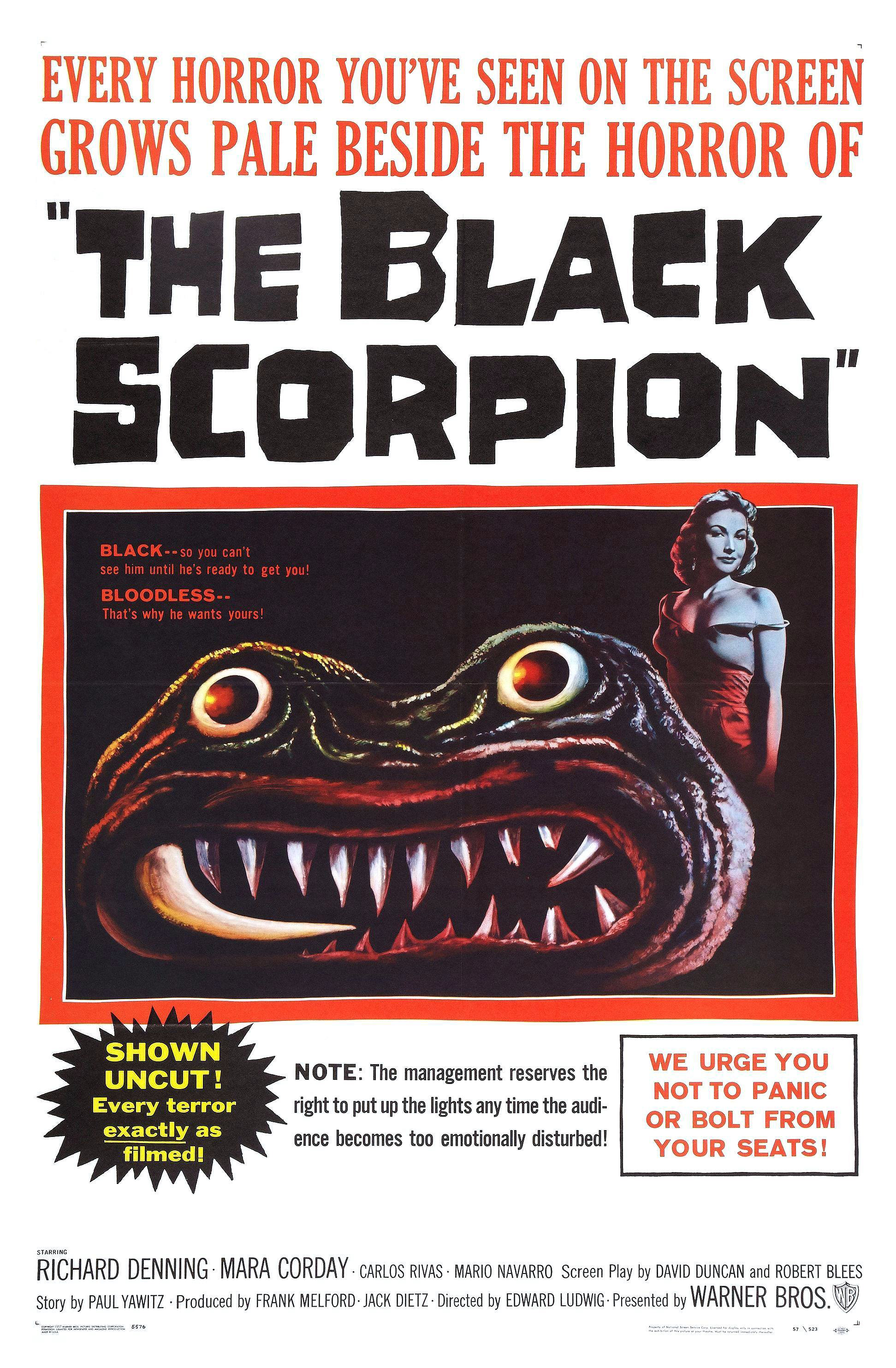 image The Black Scorpion Watch Full Movie Free Online