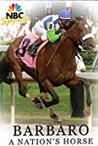 Image of Barbaro: A Nation's Horse