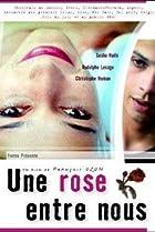 Image of Une rose entre nous