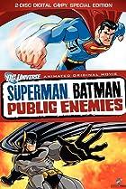 Image of Superman/Batman: Public Enemies
