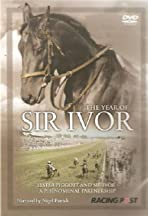The Year of Sir Ivor