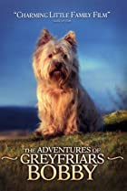 Image of The Adventures of Greyfriars Bobby
