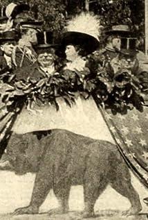 William Howard Taft Picture