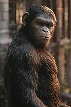 Image of Caesar