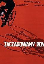 Zaczarowany rower