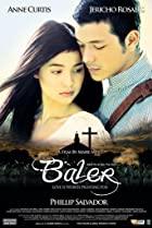 Image of Baler
