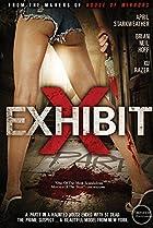 Image of Exhibit X