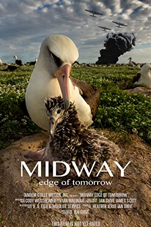 Midway: Edge of Tomorrow (2017)