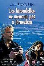 Primary image for Les hirondelles ne meurent pas à Jerusalem