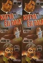 Primary image for Kutya éji dala