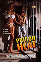 Image of Prison Heat