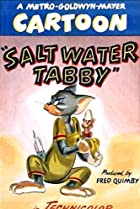 Image of Salt Water Tabby