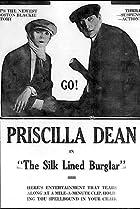 Image of The Silk-Lined Burglar