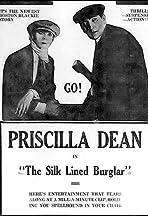 The Silk-Lined Burglar