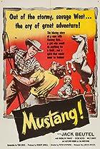 Image of Mustang!
