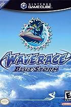Image of Wave Race: Blue Storm