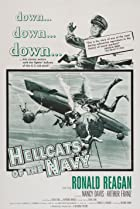 Image of Hellcats of the Navy