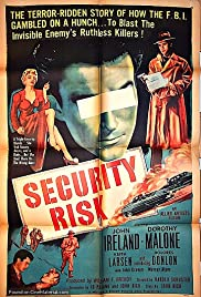 Security Risk Poster