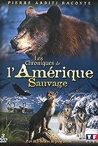 Image of Chroniques de l'ouest sauvage
