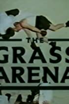 Image of Screen Two: The Grass Arena