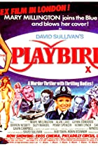 Image of The Playbirds