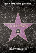 The Adventures of Velvet Prozak