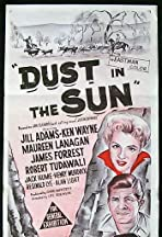 Dust in the Sun