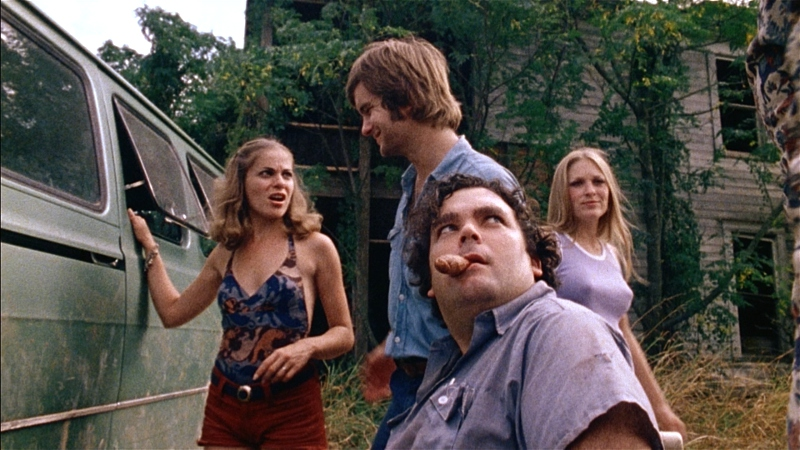Marilyn Burns, Allen Danziger, Teri McMinn, and Paul A. Partain - (IMDB)