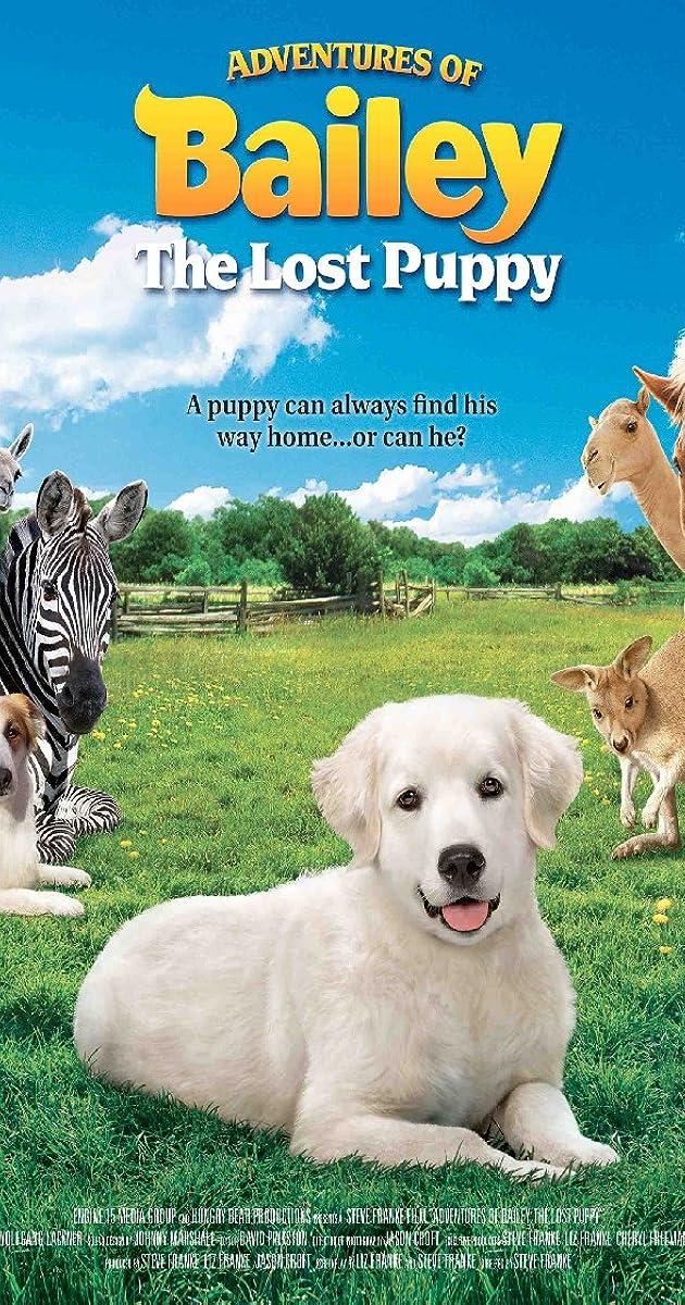 Cat Dog Tv Series