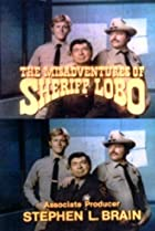 Image of The Misadventures of Sheriff Lobo