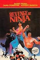Image of Revenge of the Ninja