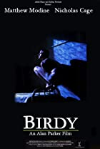Image of Birdy