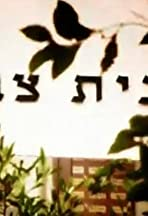 Beit Zvi