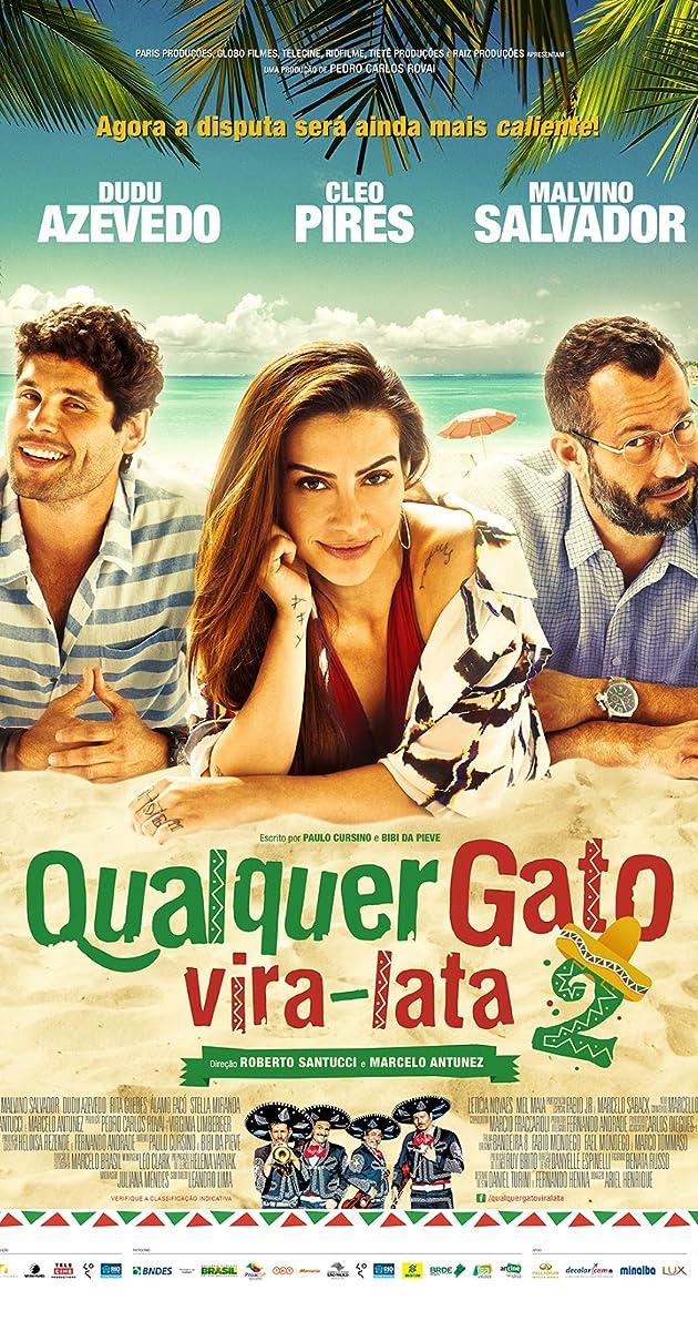Qualquer Gato Vira-lata 2