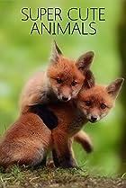 Image of Super Cute Animals