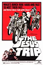 Image of The Jesus Trip