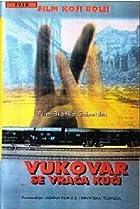Image of Vukovar se vraca kuci