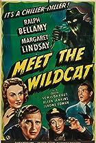 Image of Meet the Wildcat