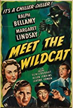 Primary image for Meet the Wildcat