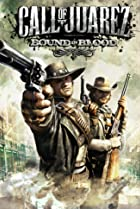 Image of Call of Juarez: Bound in Blood