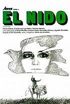 Image of El nido