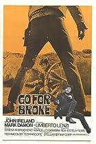 Image of Go for Broke