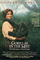 Image of Gorillas in the Mist